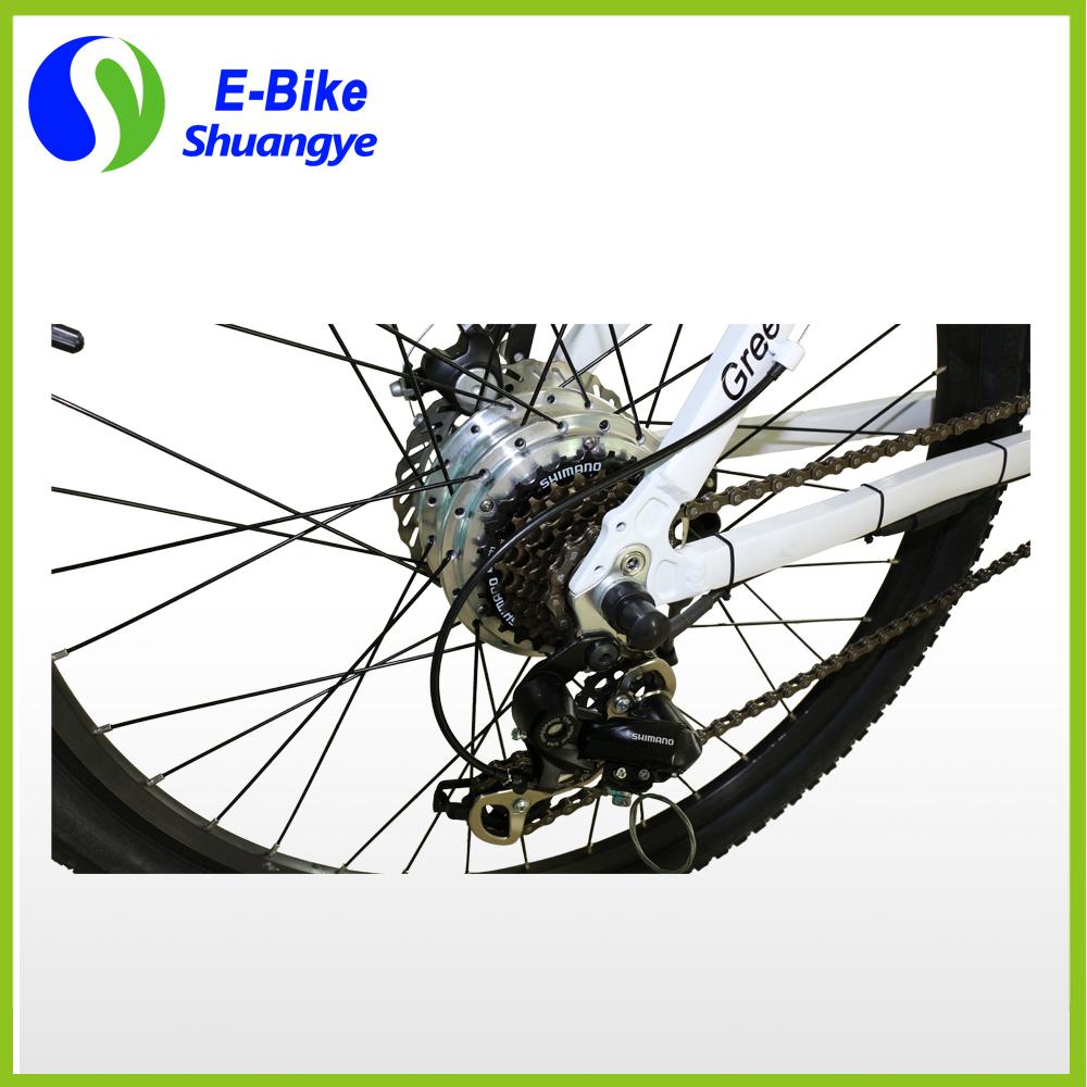 e-mountain bikes (7)