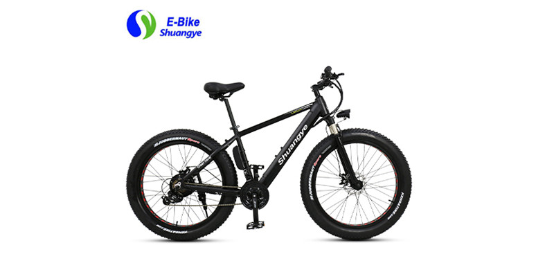 electric fat bike (10)
