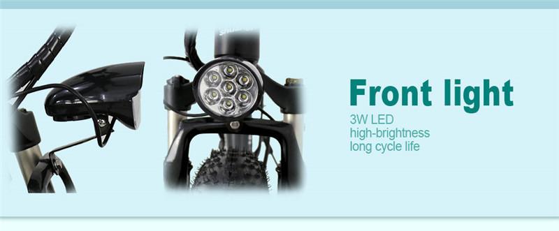 electric fat bike (12)
