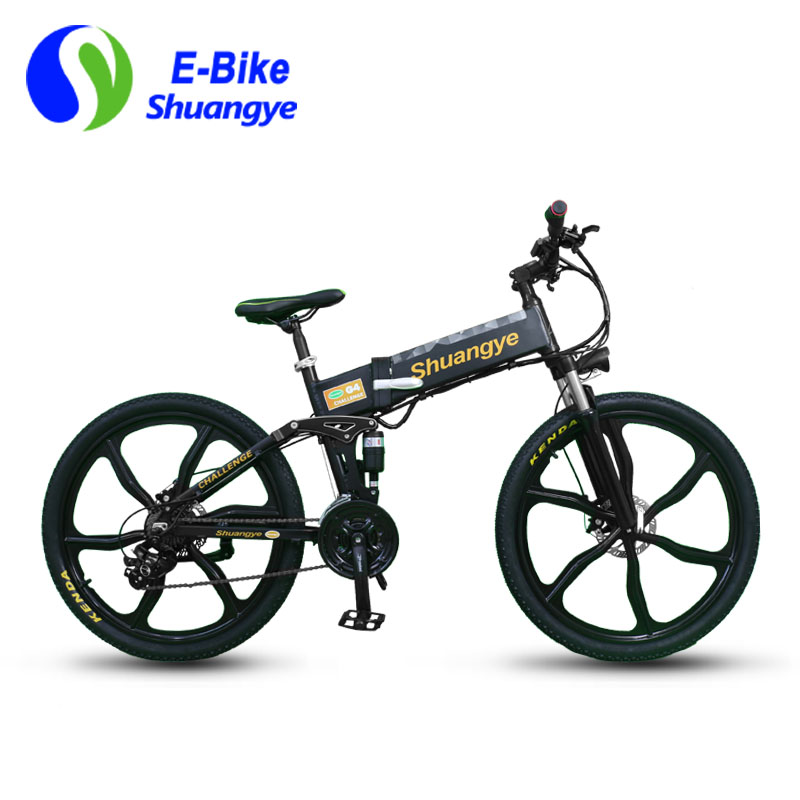 low carbon electric bike (2)