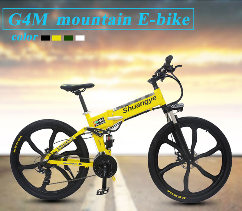 low carbon electric bike (6)