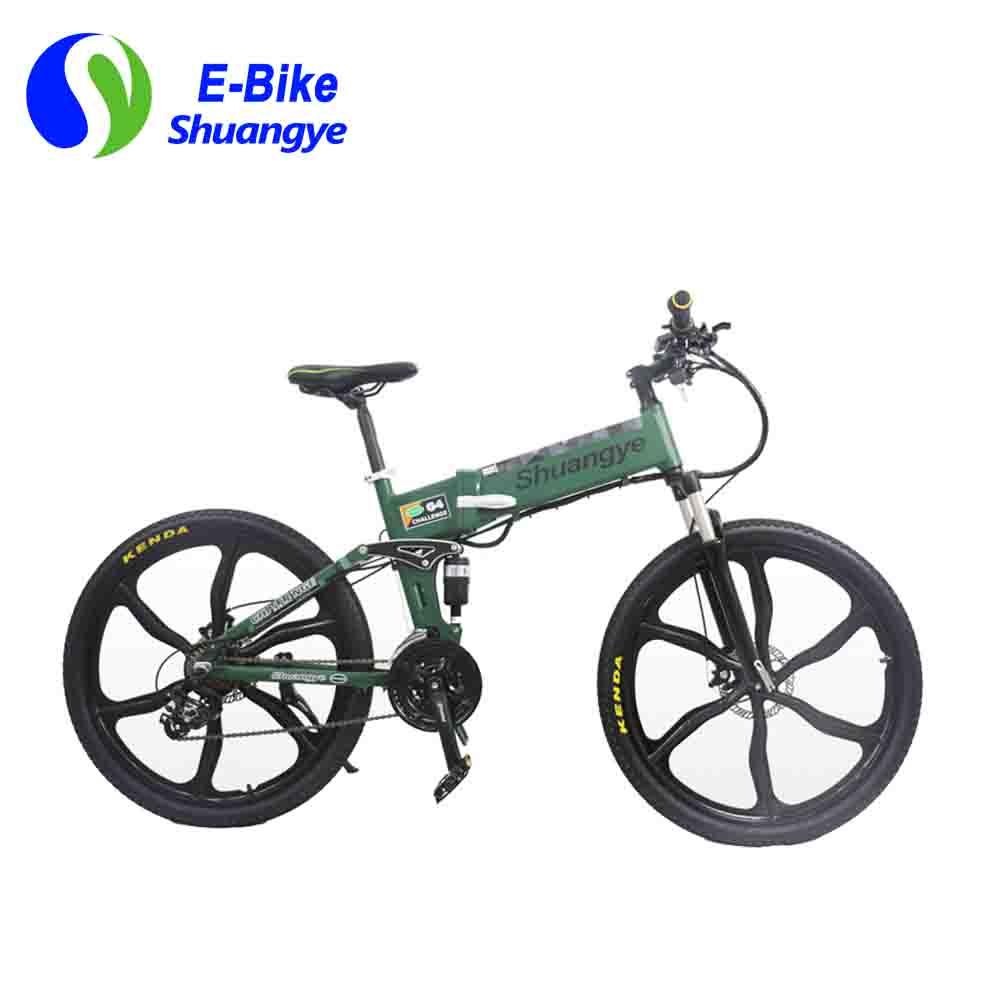 lowcarbonelectricbike (1)