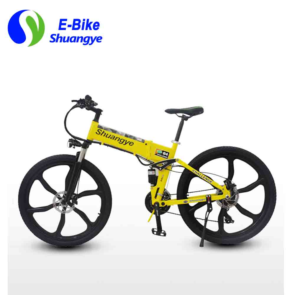 low carbonelectric bike (2)