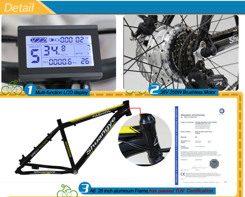mountain e bike 26 (2)