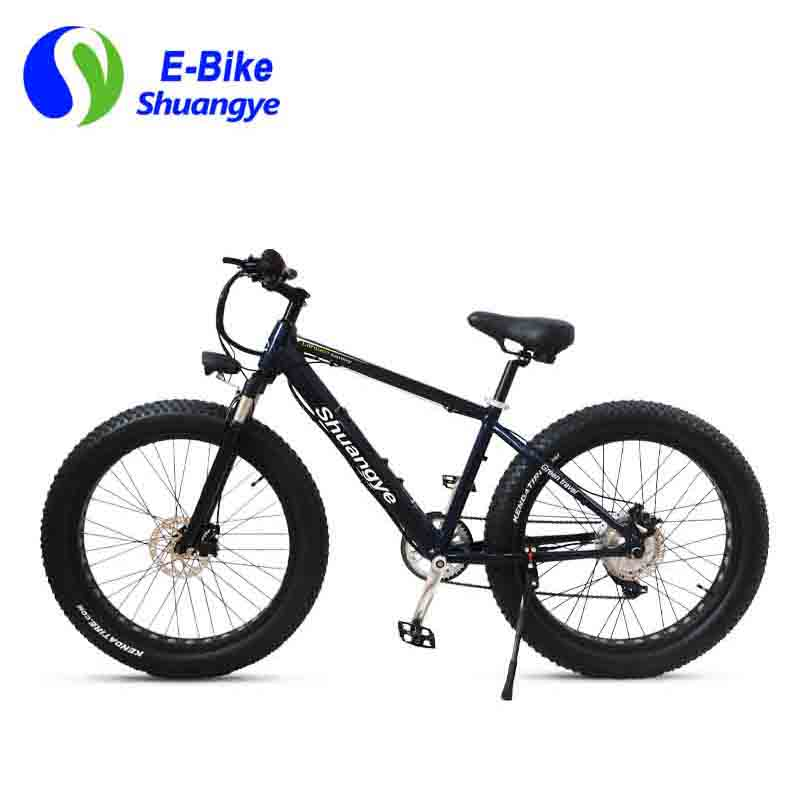 safety electric power bikes (3)