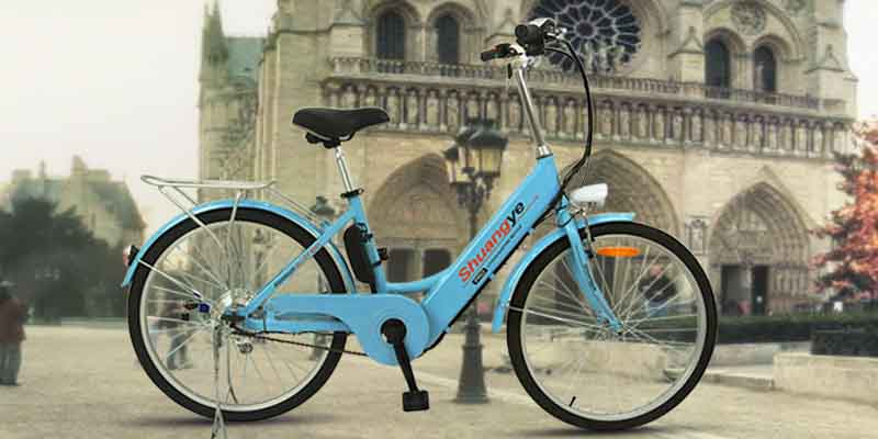 trendy electric bike (9)