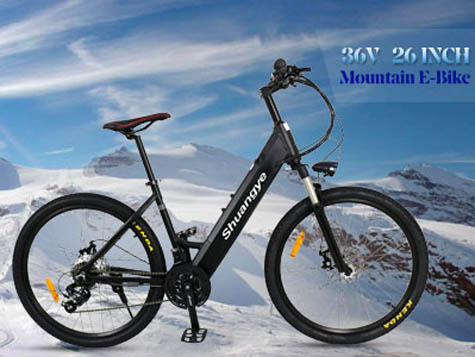 Shuangye hot sell Electric Bike video