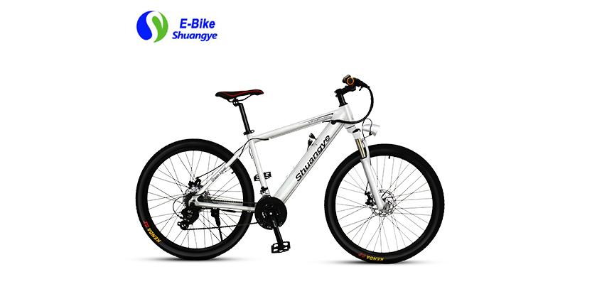 best electric mountain bike (1)