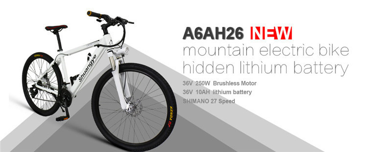 best electric mountain bike (3)