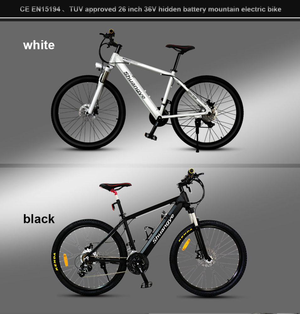 best electric mountain bike (4)