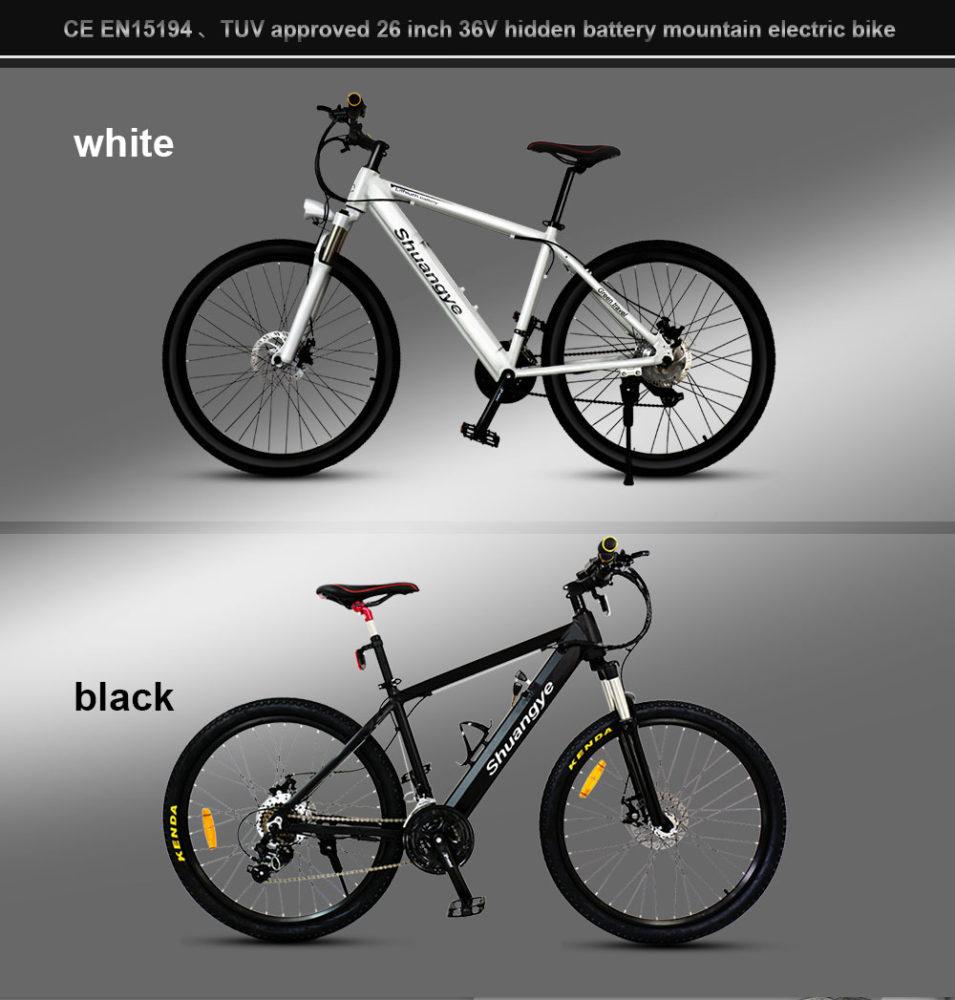 best electric mountain bike (4)