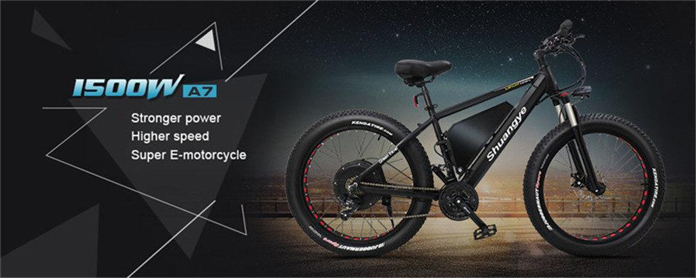 electric fat tire bike (1)