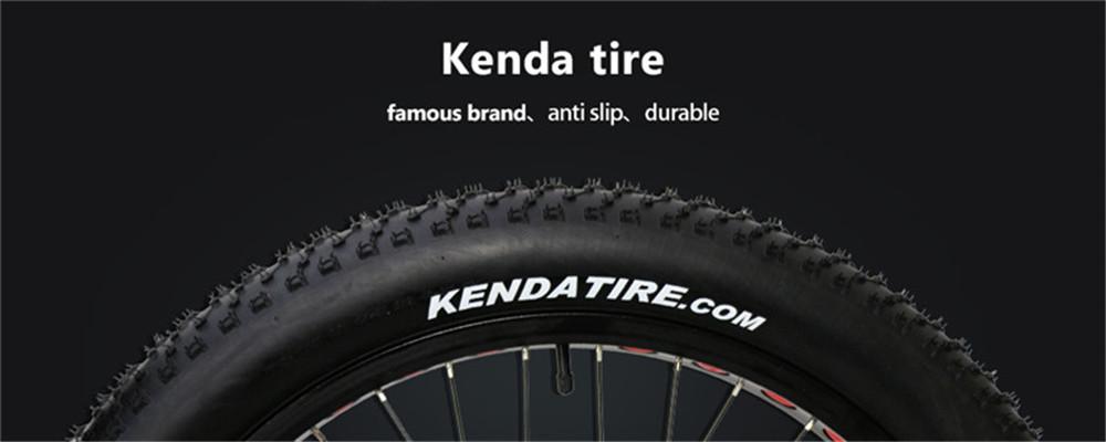 electric fat tire bike (7)