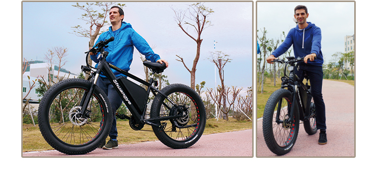 fat tire electric bicycle (11)