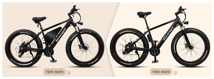 fat tire electric bicycle (3)