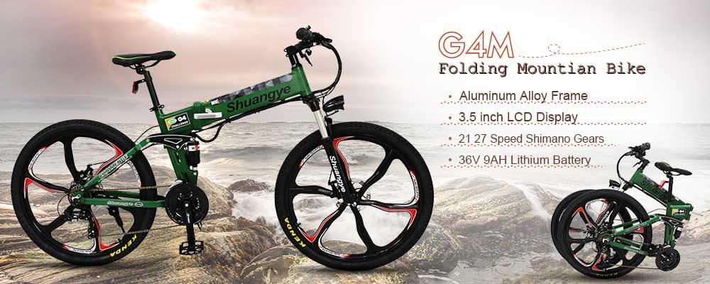 electric push bike (2)