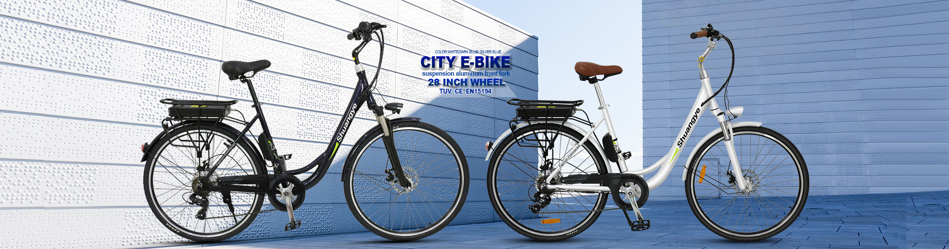 electric city bike (2)