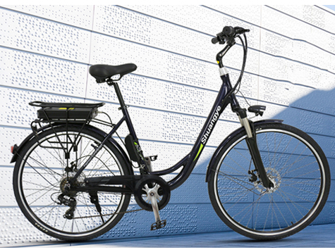 28'' 36V best electric bicycle A3 instrcution manual