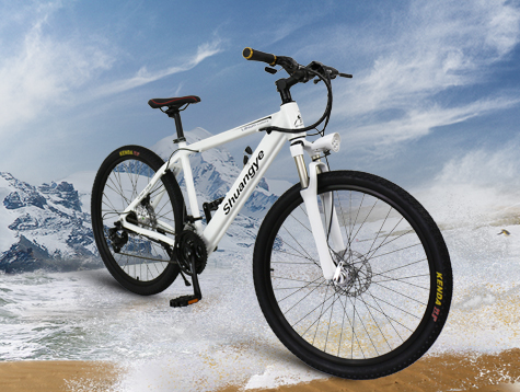 26'' elektro mountainbikes A6AH26 instrcution manual