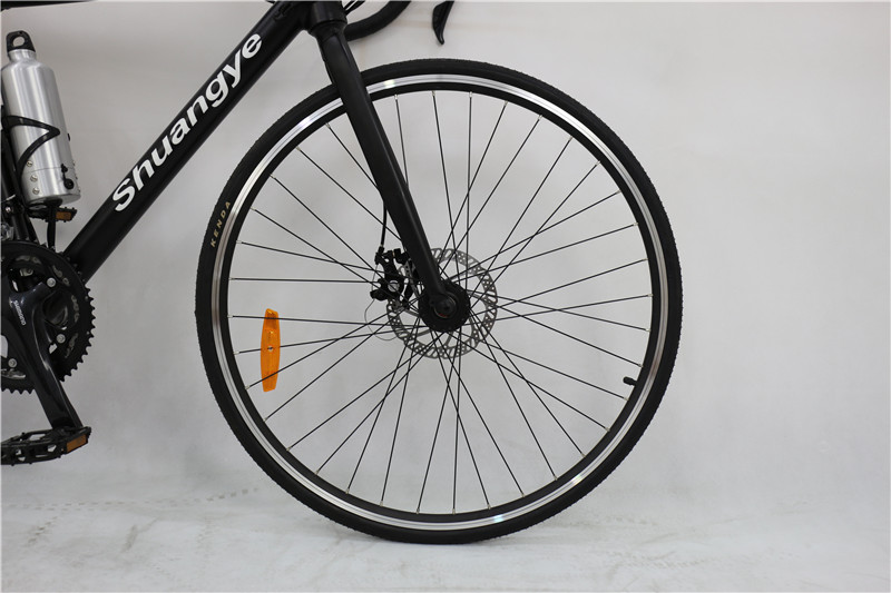 electric road bike (3)
