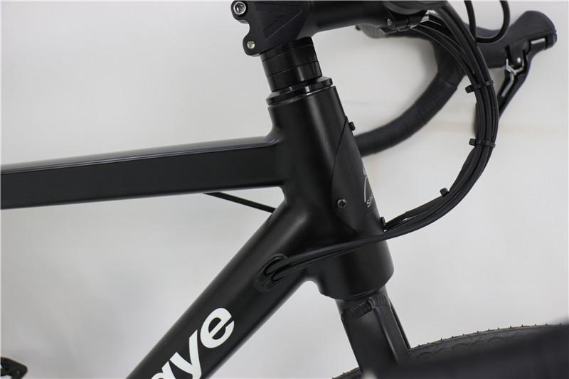 electric road bike (4)