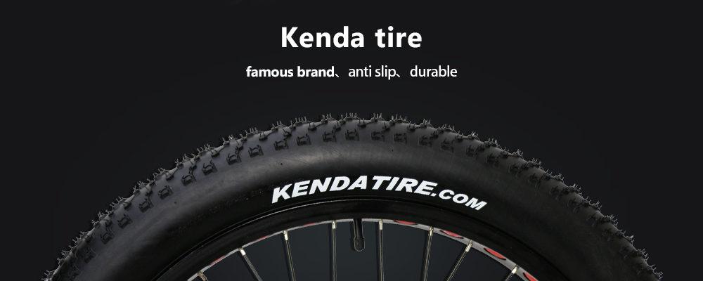 fat tire cruiser bike (7)