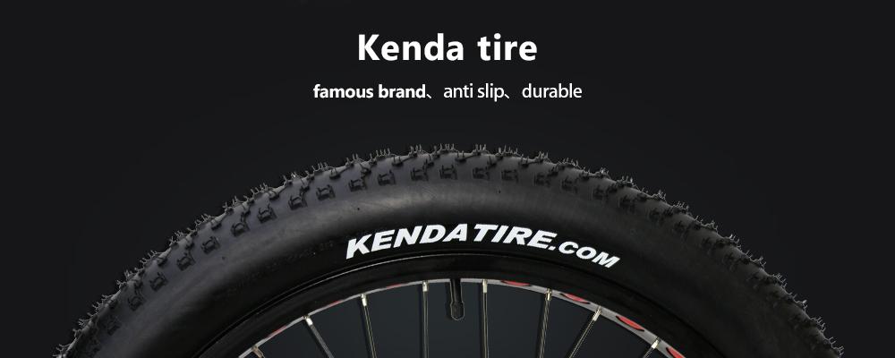 fat tire motorized bike (7)