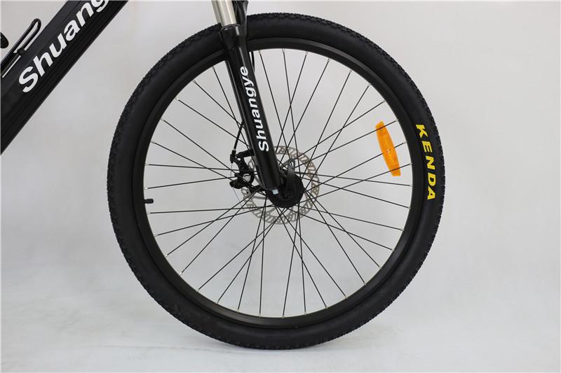 full suspension electric bike (4)