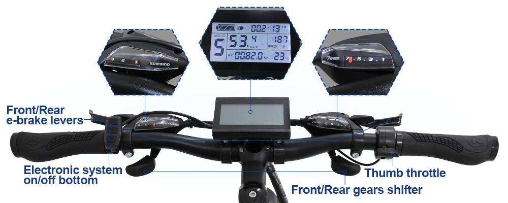 motorized bike2