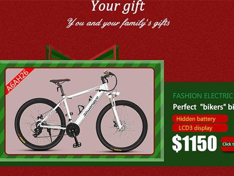 Christmas discount electric mountain bikes