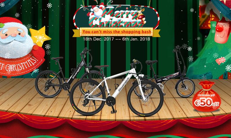 electric bike (1)