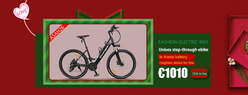 electric bike (4)