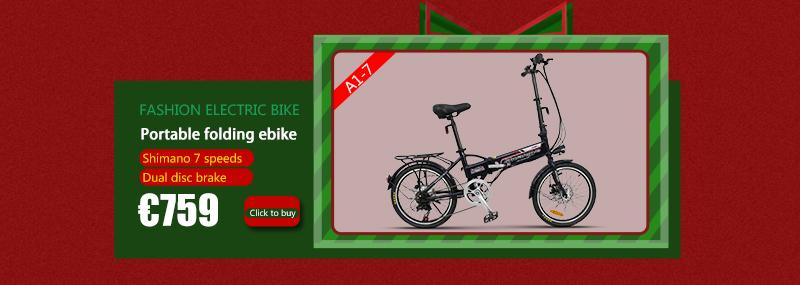 electric bike (5)