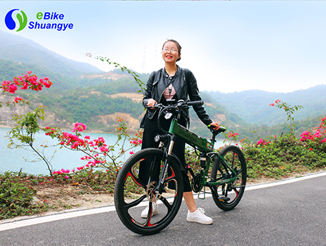 26 Magnesium alloy integrated wheel electric bike G4M