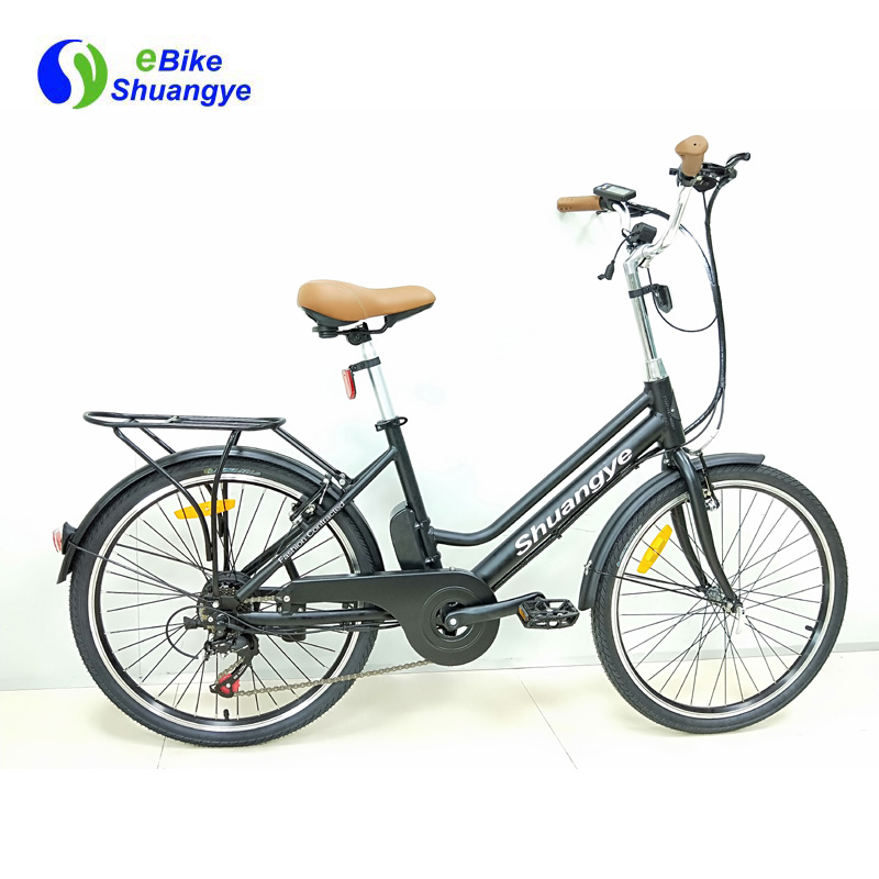 economical family use electric bike city bike