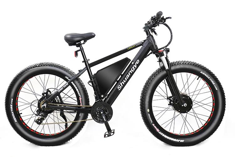 dual motor electric bike0