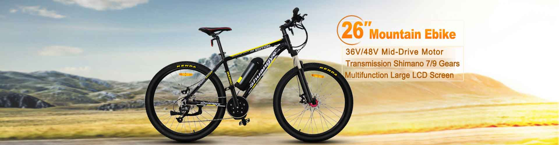 mid drive motor electric bike
