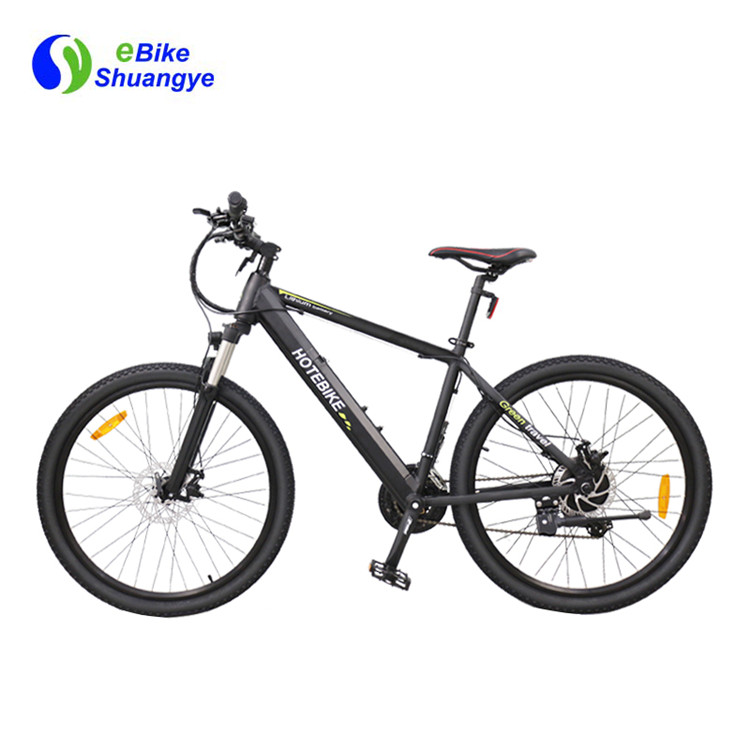 adult electric bicycle