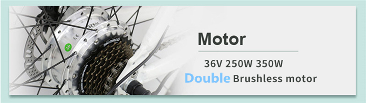 double brushless motor