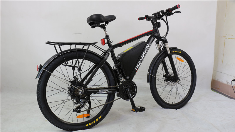 electric bike (1)