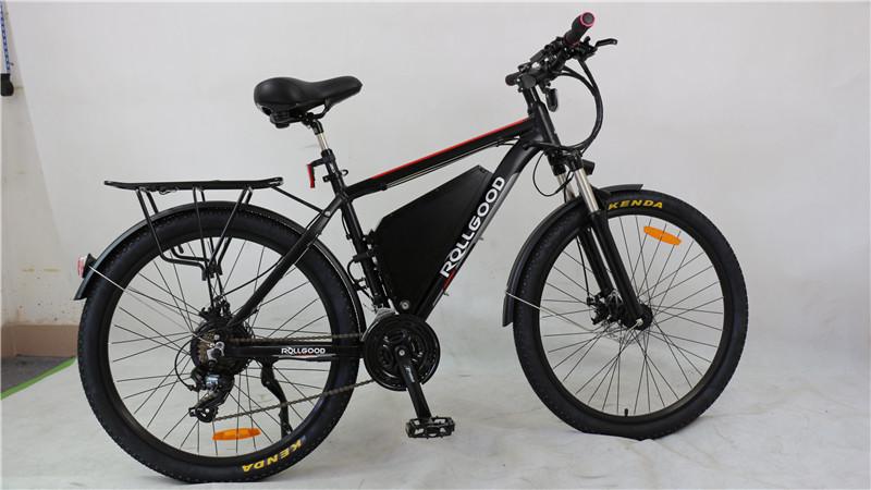 electric bike (6)
