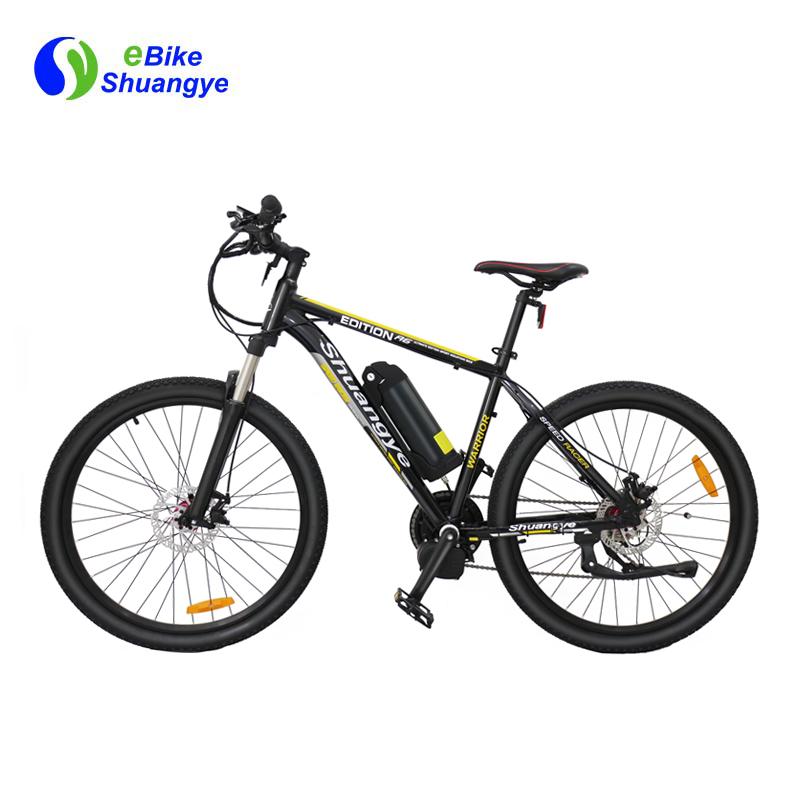 mid drive electric bike (13)