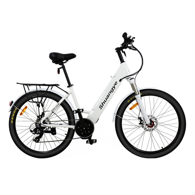 mid drive electric bike (4)