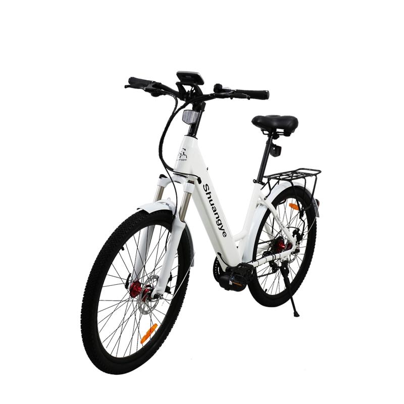 mid drive electric mountain bike (2)