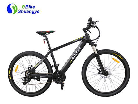 Hot selling 36V 350W mountain electric bicycle for USA