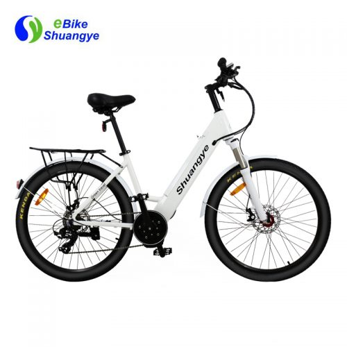 bafang mid drive motor electric mountain bicycle