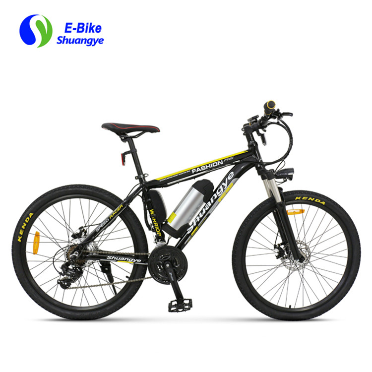 electric bike (6)