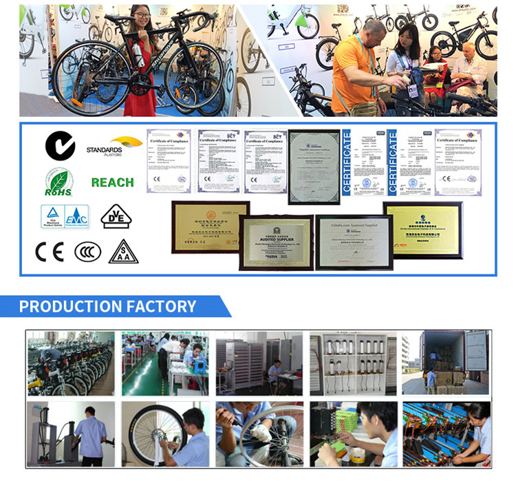 electric bike factory