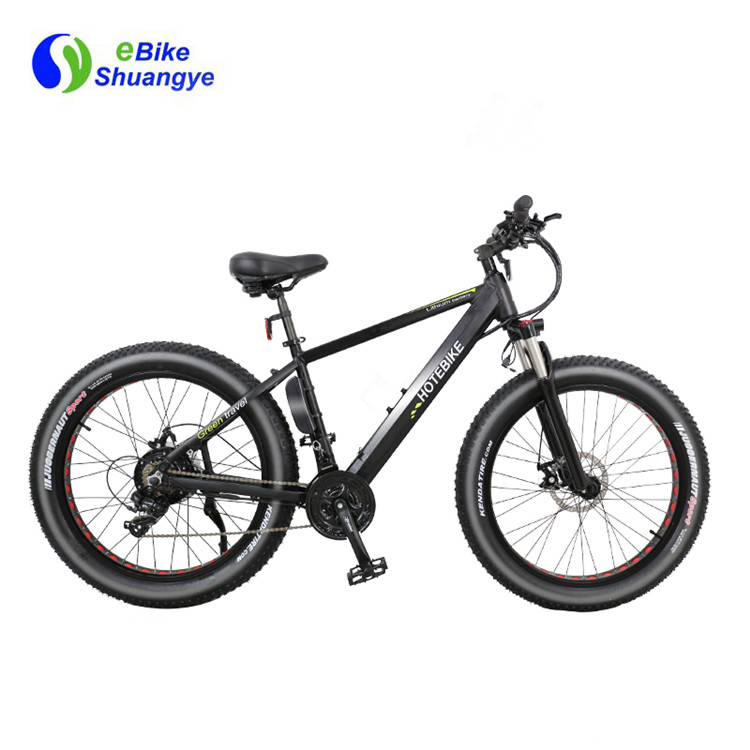 snow electric bike