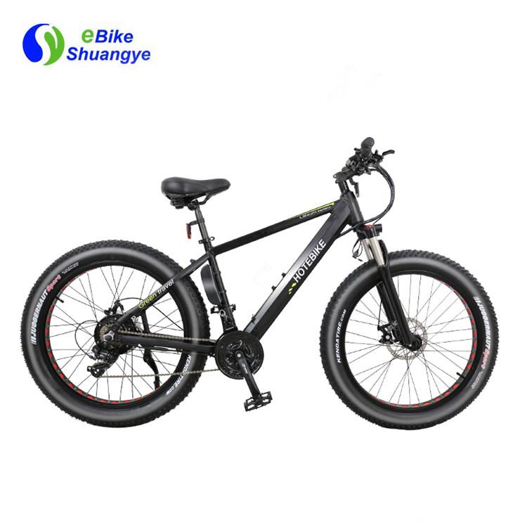 snow electric bike